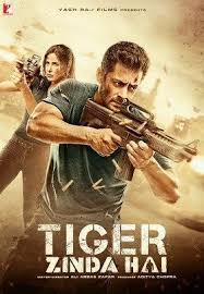 Tiger Zinda Hain Full Movie Download 720p 739MB HD Quality